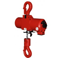 Red Rooster Mini Air Hoist TCR-250 & TCR-500/2