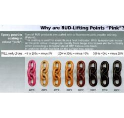 RUD PowerPoint PP-B Swivel Eye Bolt